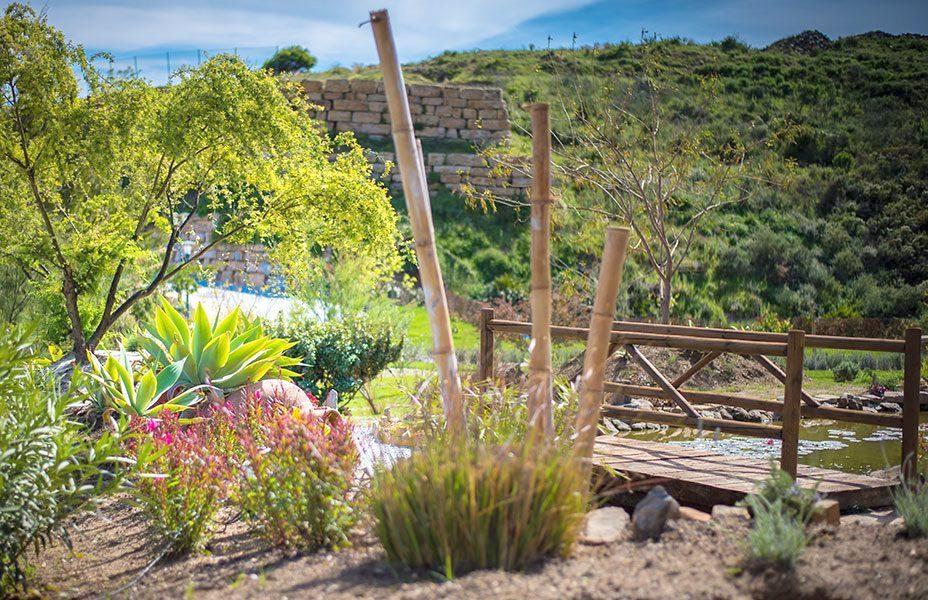 CORTIJOS-Garden.jpg