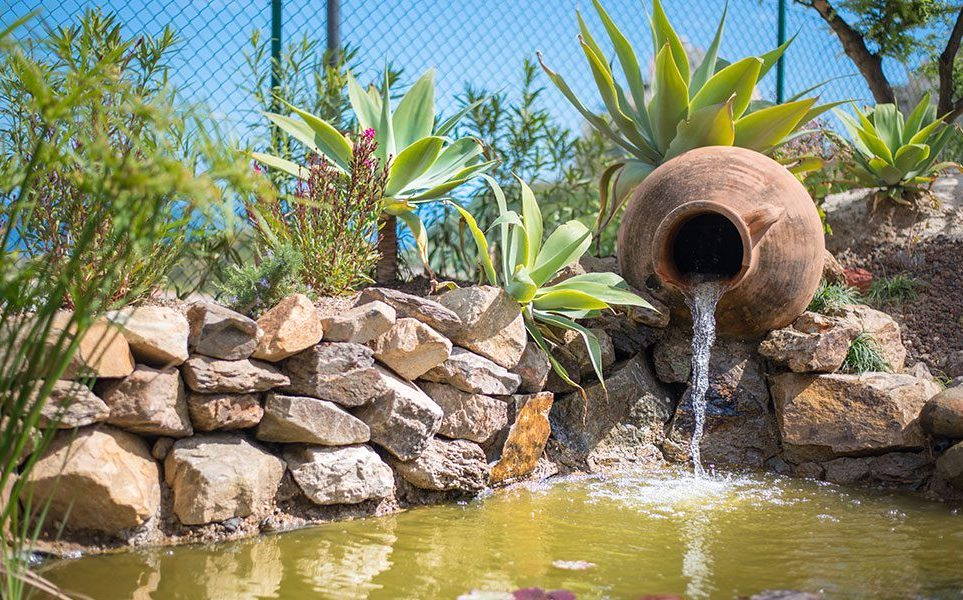 CORTIJOS-Pond.jpg