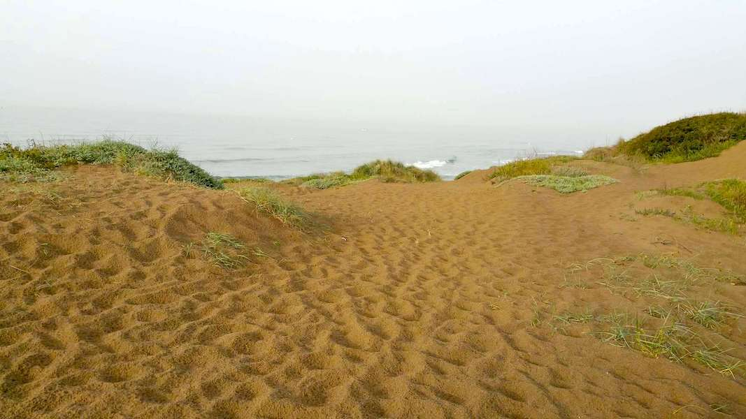 LC18136-Beach2.jpg