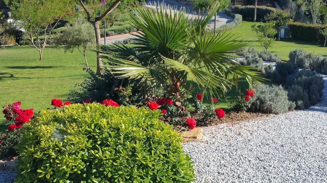 LC18136-Garden.jpg