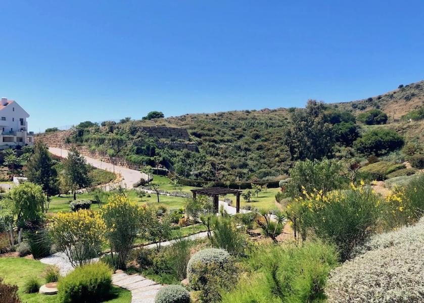 LC425-Garden.jpg
