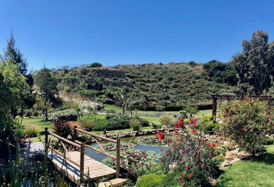 LC537-Garden.jpg