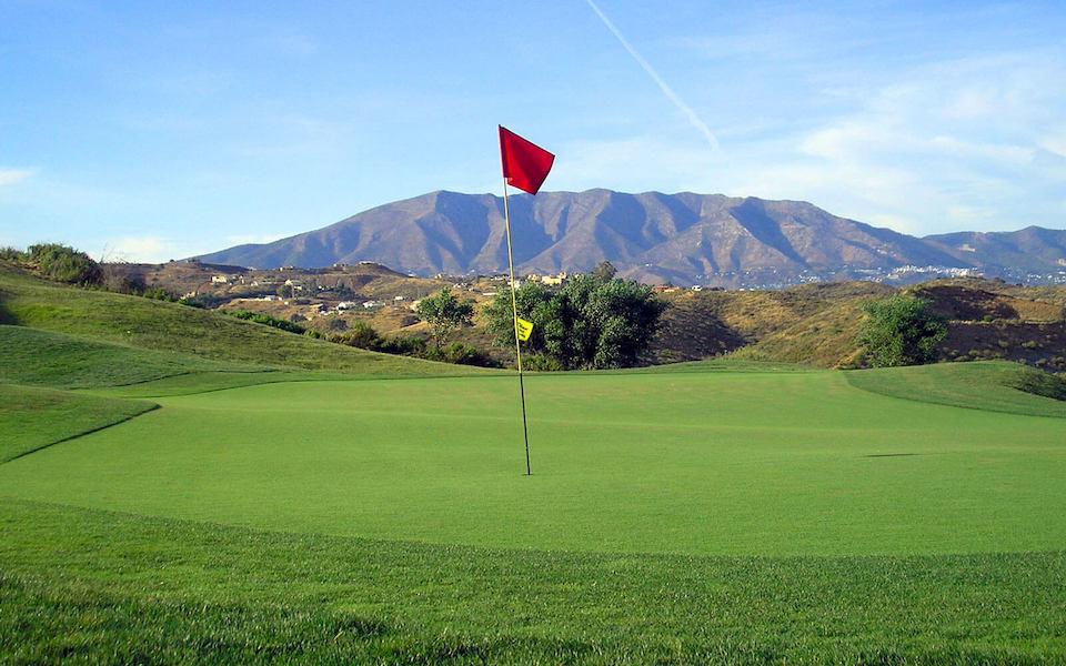 LC537-GolfGreen.jpg