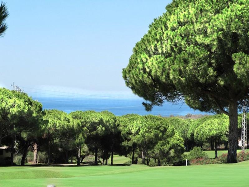 Las_Mimosas-cabopino_golf.jpg