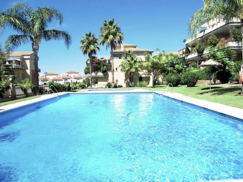 Las_Mimosas-pool.jpg